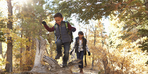 More than three-fourths of survey respondents are likely to buy a state parks day pass after participating in the Colorado Parks and Wildlife/Colorado State Library program Check Out Colorado State Parks